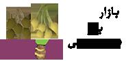 قیمت خرید و فروش انواع بذر های سیب زمینی | بذر سیب زمینی