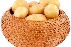 بذر سیب زمینی اصفهان